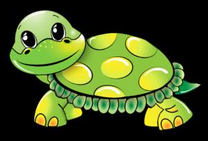 szybko jak żółw