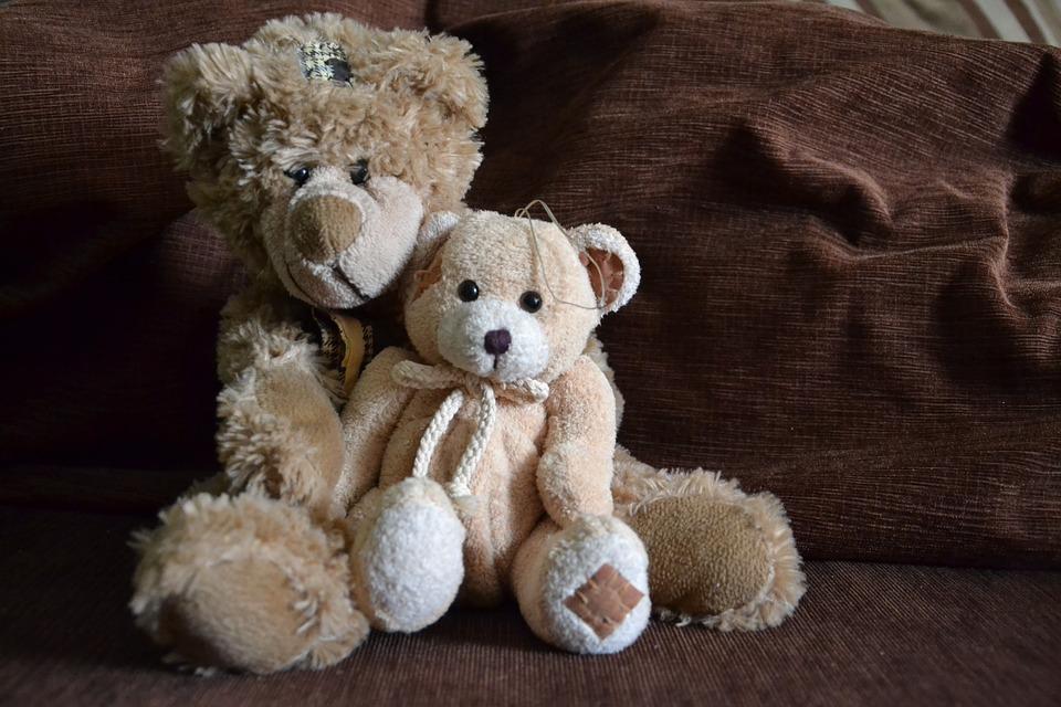 My Teddy Bear has…